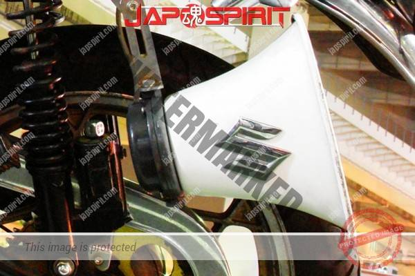 SUZUKI GSX250T, Zokusha, Ghost flare paint on tank & cowl & cover with brown sandan sheet, (1)