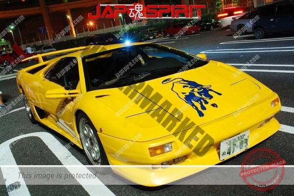 Lamborghini mid night party, Diablo & Murcielago, Beautiful lighting is very exciting & super cool! (18)