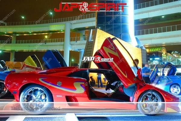 Lamborghini mid night party, Diablo & Murcielago, Beautiful lighting is very exciting & super cool! (4)