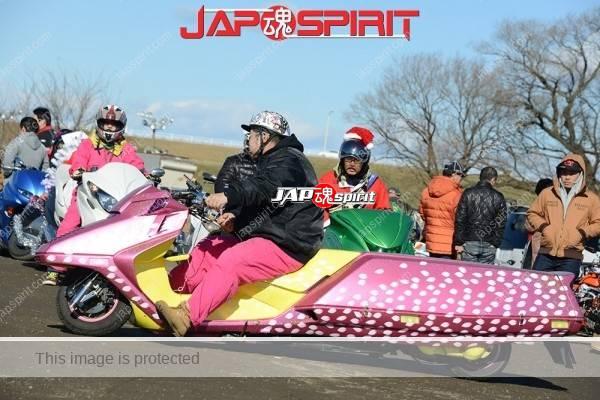 Extreme long bike, Honda Fusion/Helix, Pink color with Sakura petal pattern (8)